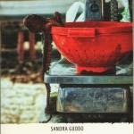 """""""Le Geolier"""", un noir raffinato di Sandra Guddo"""