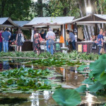 Torna Una marina di libri all'Orto Botanico di Palermo