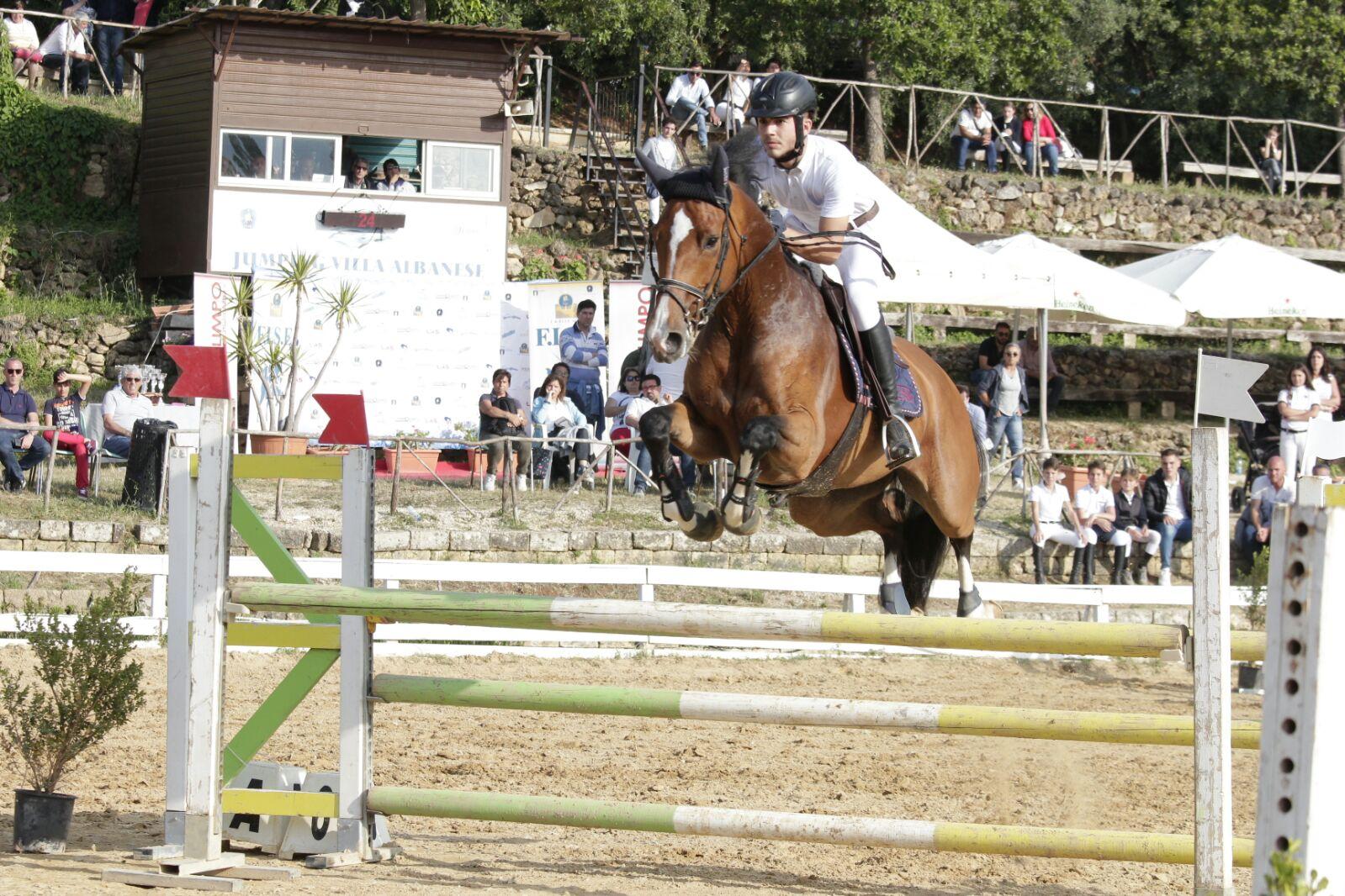 Testaverde_Doornroosje _horses foto (2)