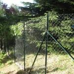Distanze legali: costruzioni, muri e alberi